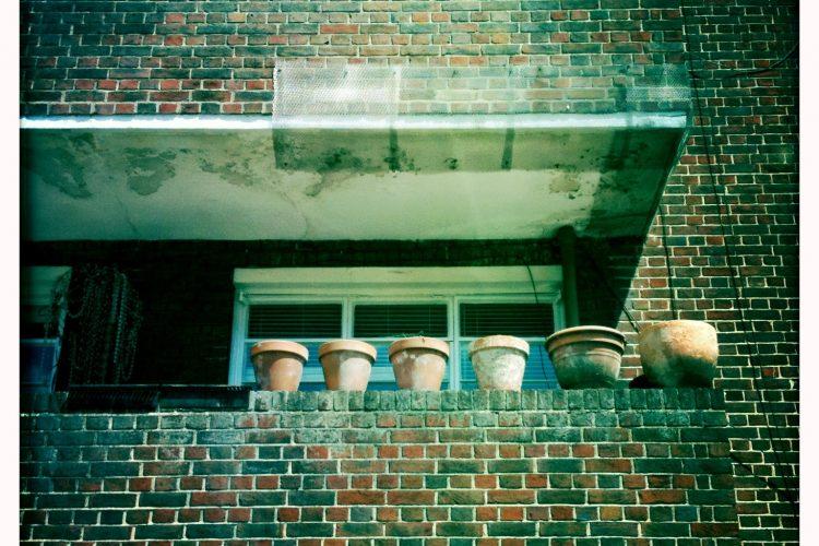 Pots at Dorchester Court, new order